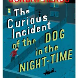 Curious Incident of dog in night time